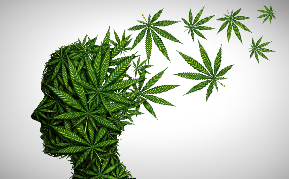 Cannabis Brain Hacks: What Happens When You Mix Cannabinoids and Nootropics